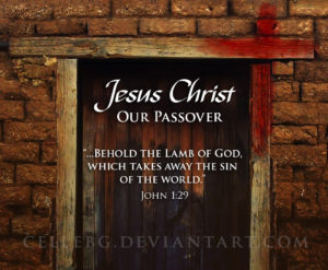 Jesus Christ Our Passover John 1:29